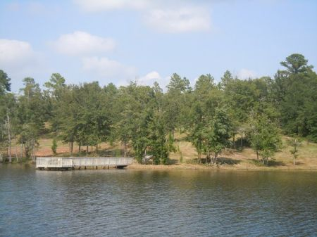 Reduced Cartee Lake 312+/- Acres : Metter : Candler County : Georgia