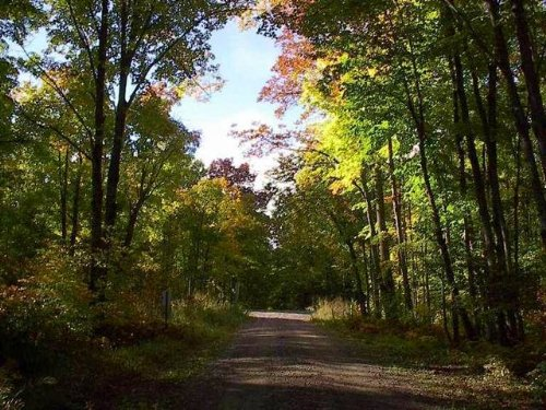 39 Acres Co Rd 424 Mls 1093572 : Crystal Falls : Iron County : Michigan