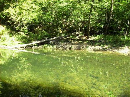 76 Acres Along The Saline River : Lonsdale : Saline County : Arkansas