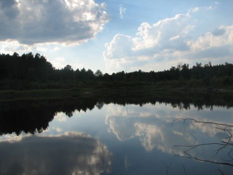Wiggins Tract 137+/- Acres : Millen : Jenkins County : Georgia
