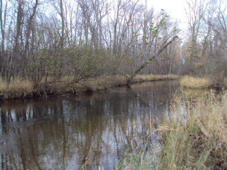 88 Acres On The Pere Marquette Rive : Scottville : Mason County : Michigan