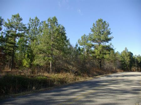 36 Acres - Half Mile Of Rd Frontage : Steele : St. Clair County : Alabama