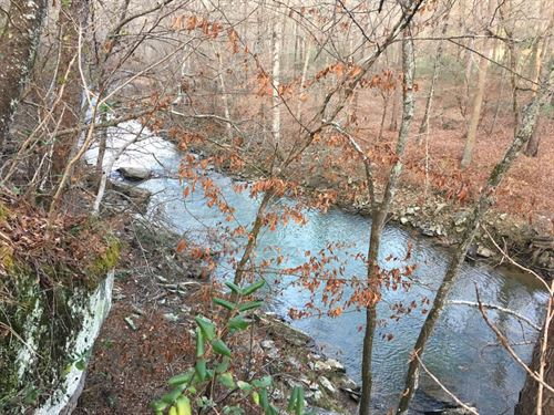 48 Acres - 3,000 Ft. Of River Frtg : Oneonta : Blount County : Alabama