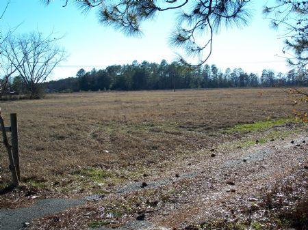 Cypress House, Timber, Creek, Pond : Americus/ellaville : Sumter County : Georgia