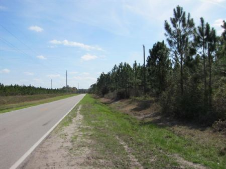 50 Ac. $2750/acre- Starke : Starke : Bradford County : Florida