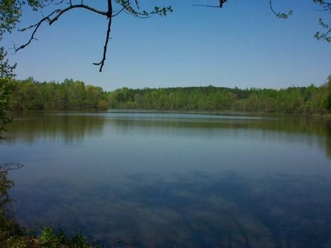255 acres on I-85 - Lake Amlajack : Newnan : Coweta County : Georgia