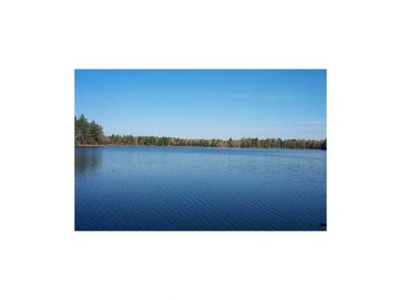 Ideal Waterfront Lot : Montville : Waldo County : Maine