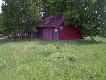 Buck Bananza : Scottville : Mason County : Michigan