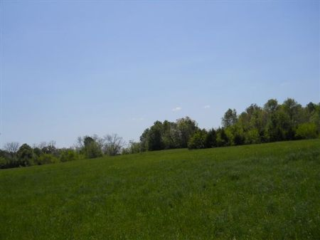 113 Acres In Starkville, Ms : Starkville : Oktibbeha County : Mississippi