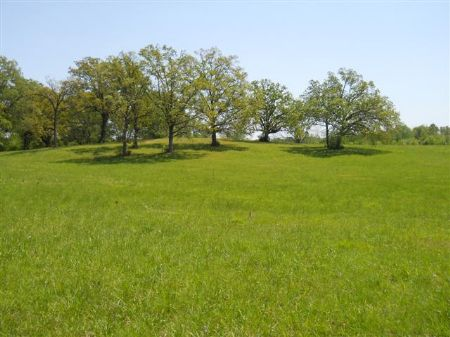 80 Acres In Starkville, Ms : Starkville : Oktibbeha County : Mississippi