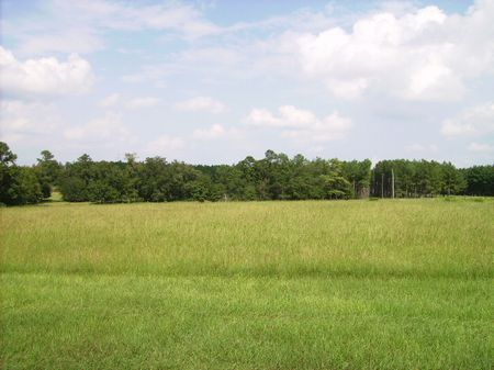 Home With Pasture And Pond : Vienna : Dooly County : Georgia