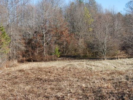 12 Acres For Small Farm : Chesnee : Spartanburg County : South Carolina