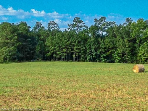 80 Acre Recreational Tract : Blackstock : Chester County : South Carolina