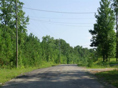 48 Acres - Bank Owned - No Redempt : Odenville : Saint Clair County : Alabama