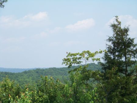 133 Acres Priced At $1,650 Per Acre : Sewanee : Marion County : Tennessee
