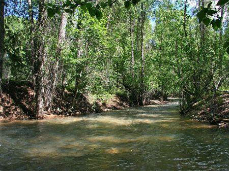 Mancos River Ranch : Mancos : Montezuma County : Colorado