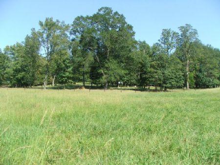 Twin Springs Farm : Fayette : Alabama