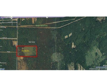 Nelson 51 : Idlewild : Lake County : Michigan