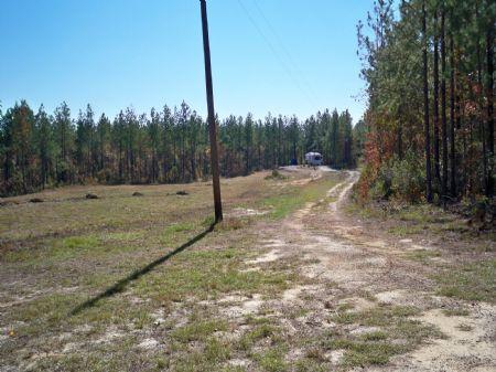 96.48 Acre Hunting Getaway : Swainsboro : Emanuel County : Georgia