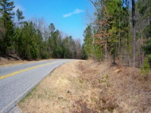 371 Acres Forest & Hunting : Lizella : Crawford County : Georgia