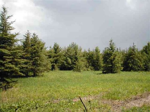 Tbd Duba Road Mls #1062372 : Kenton : Houghton County : Michigan