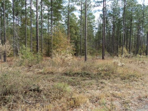 51 Acres On Sand Hill Road : Swainsboro : Emanuel County : Georgia