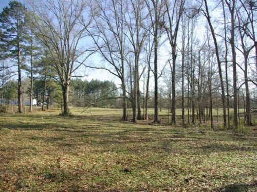Pasture - Pond -woods & Small Creek : Ragland : St. Clair County : Alabama