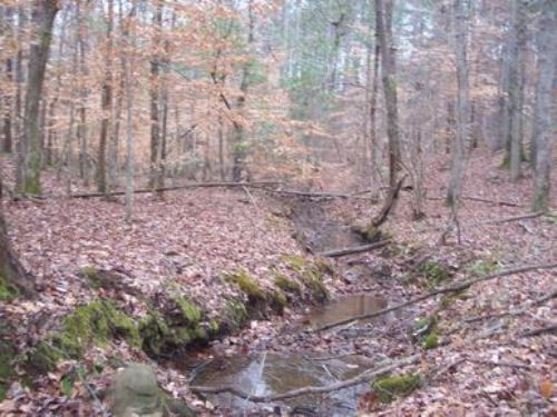 800+/- Acres South Of Roanoke, Al : Lafayette : Chambers County : Alabama