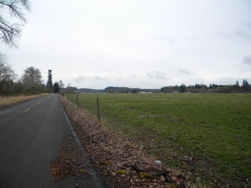 115 Acres Of Prime Farmland : Castle Rock : Cowlitz County : Washington