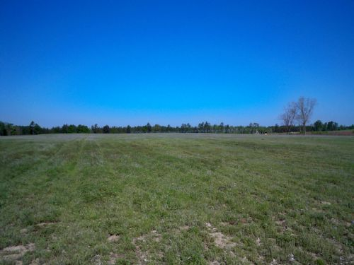 290 Acre Farm With Irrigation : Swainsboro : Emanuel County : Georgia