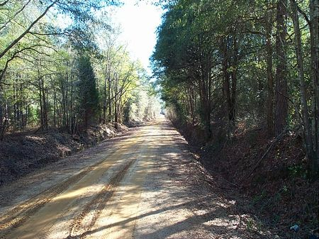 232 Acres Excellent Hunting & Pond : Swainsboro  : Emanuel County : Georgia