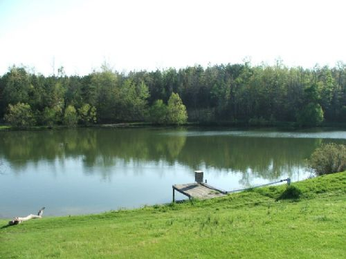 Springhill Preserve : Moundville : Hale County : Alabama