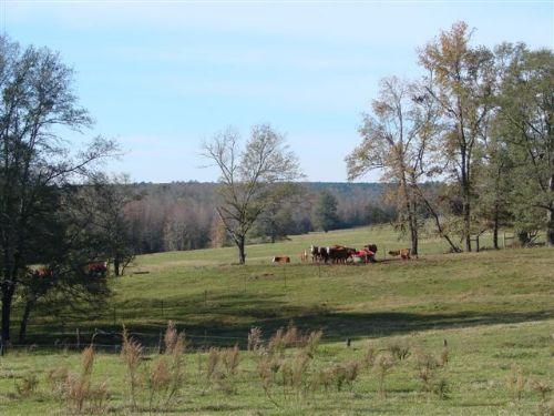 Brushy Creek South : Keysville : Burke County : Georgia