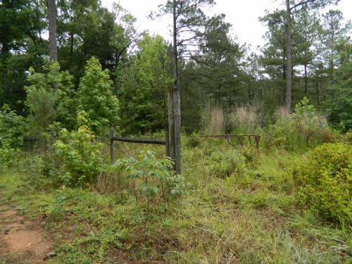 15.86 Acres With Pond : Carlton : Oglethorpe County : Georgia