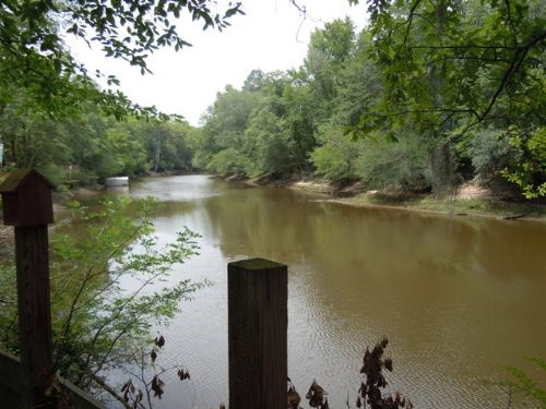 505+/- Acs On The Ogeechee River : Swainsboro : Emanuel County : Georgia