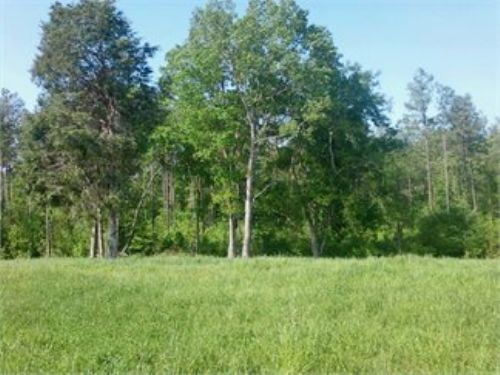 Beautiful 13 Acres Farm : Camden : Kershaw County : South Carolina