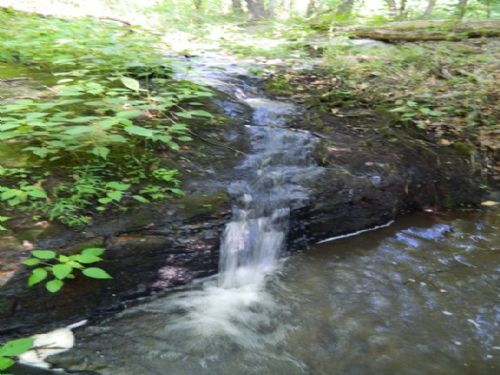 38.79 Ac Hunting Tract With Creek : Carlton : Oglethorpe County : Georgia