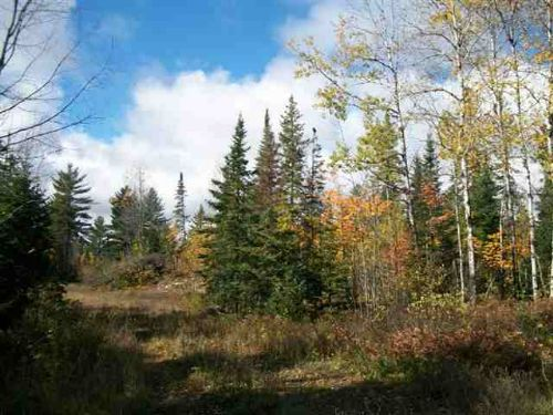 Tbd M95   Mls #1067957 : Republic : Marquette County : Michigan