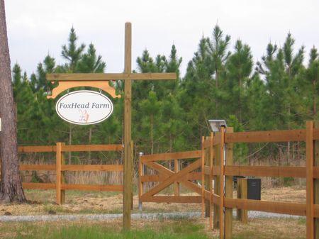 Grandpa's Old Farm 261 Ac : Soperton : Treutlen County : Georgia