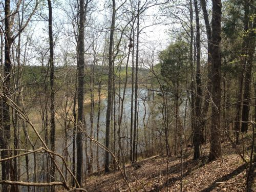 Rivers Edge - 451+/- Acres & Lodge : Carlisle : Chester County : South Carolina