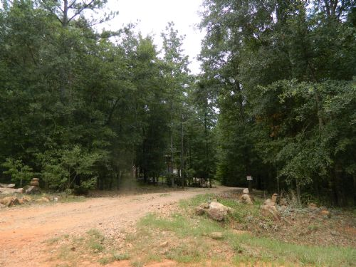 47.6 Ac Hunting Tract/creek : Carlton : Oglethorpe County : Georgia
