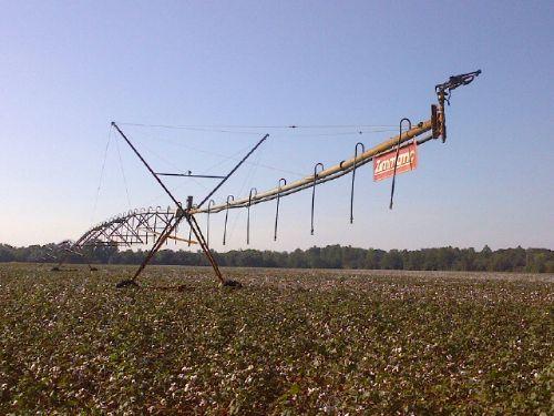 Fertile Income Producing Farm : Oglethorpe : Macon County : Georgia