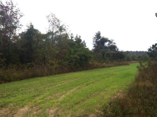 Hunting/ Investment Tract : Cuthbert : Randolph County : Georgia