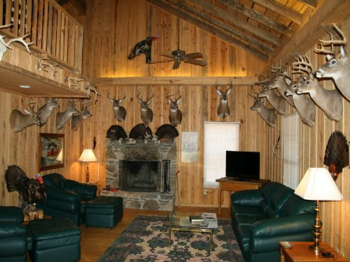 283 Acre Hunting Camp With Cabin : Mcewen : Humphreys County : Tennessee