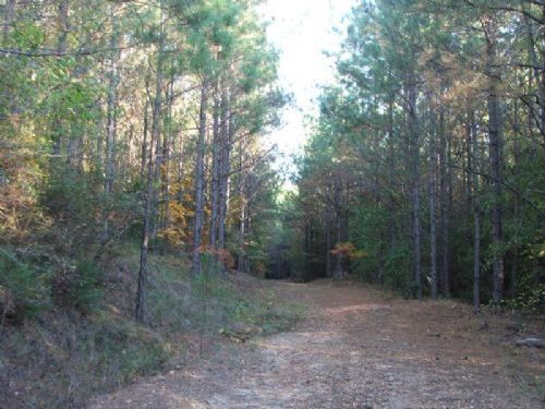 442 Ac Gandy Creek Tract : Maplesville : Chilton County : Alabama