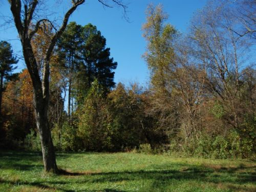 84 Acre Recreational Tract : Spartanburg : South Carolina