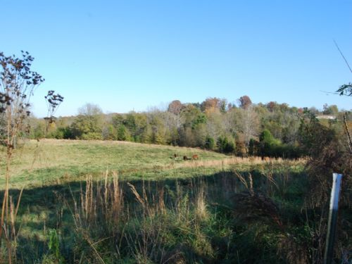 20.3 Acres In School District 2 : Chesnee : Spartanburg County : South Carolina