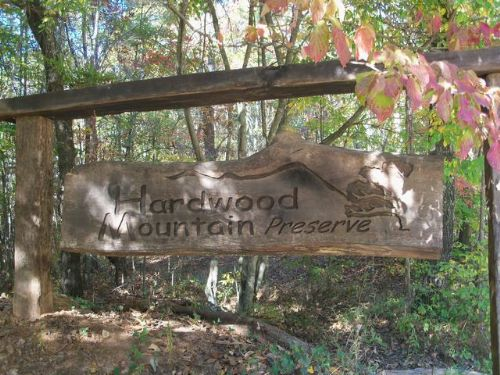 10.32 Acres In Hardwood Mountain Pr : Fruithurst : Cleburne County : Alabama