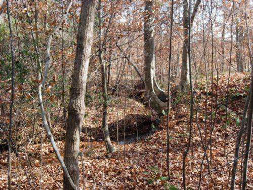 46.43 Acre Hunter's Dream : Gaffney : Cherokee County : South Carolina