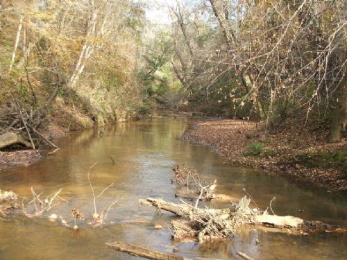 Old Town Creek Tract : Sprott : Perry County : Alabama